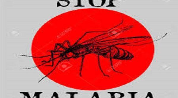 malaria autoctona Italia Sofia Zago