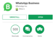 WhatsApp Business debutta in Italia, cos'è e come funziona